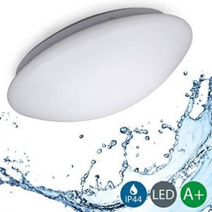 B.K. Licht plafonnier LED salle de bain, lampe moderne design épuré, éclairage intérieur plafond, 230V, IP44, 12W, IP44, Ø 290mm de la marque B.K.Licht image 0 produit