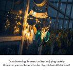 Capteur de Rêves,Attrape Rêves À la main Traditionnel Bleu & Marron Indien Suspension Décorative Ethnique Plumes Mur Décoration à Suspendre(Marron) de la marque Wangwtry image 1 produit