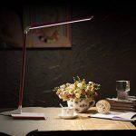 Deckey 10WLampe de Bureau Lampe de Table Lampe de Lecture Orientable 60LED Rose de la marque Deckey image 1 produit
