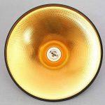 E27 Métal Retro Suspensions Luminaires Lamps Antique Plafonnier Luminaire Lumiere Industriel Antique Suspension Lumiere Lampe LED Aluminium Vintage éclairage de Plafond Industriel Antique Plafonnier Lumiere LED(Noire) de la marque Chrasy image 3 produit