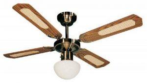 Farelek Bali Ventilateur de plafond 107 cm Brun de la marque Farelek image 0 produit