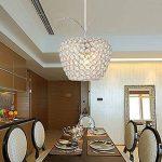Haoaijia Lustres Acier Inoxydable Cristal Plafond Salon Plafonnier Led Lampes Diamètre 25Cm de la marque Haoaijia Lustres image 2 produit