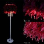 HhGold Plume Lampadaire E27 LED Cristal Métal Mode Lampe Salon Salle De Mariage Decro (coloré : Rouge Vineux, Taille : -) de la marque HhGold image 1 produit