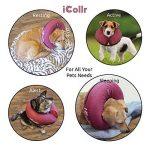iCollr Collier Gonflable De Rétablissement d'Animal Familier - Collier Protecteur Pour Les Chiens et Chats en récupération post-opératoire de la marque iCollr image 2 produit