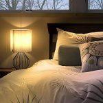 Lampe de table, Chevet minimaliste Plastique Lampe de bureau, Aglaia moderne Argent chromé 1Panier métallique style cage en tissu et argent avec un Ombre et 4W LED Lampe [Blanc chaud] de la marque Aglaia image 4 produit