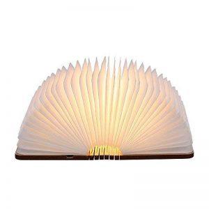 Lampe livre, Tomshine 500 Lumens Pliante en Forme de Livre avec Batterie Lithium Rechargeable Port USB Lampe de chevet Veilleuse lumières décoratives Blanc chaud Dimension: 12.1 * 9.5 * 2.5cm (4.8 * 3.7 * 1Inch) de la marque Tomshine image 0 produit