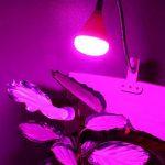 Lampe pince Plante LED FLEX–anschlussfertig Prise Euro avec interrupteur de la marque HAVA image 3 produit