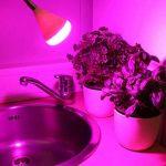 Lampe pince Plante LED FLEX–anschlussfertig Prise Euro avec interrupteur de la marque HAVA image 4 produit