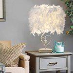 LEDMOMO Lampe de table en feather Table, en forme de coeur Lampe de chevet en cristal pour chambre à coucher Foyer Living Reading Salon Chambre Chambre de la marque LEDMOMO image 2 produit