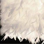LEDMOMO Lampe de table en feather Table, en forme de coeur Lampe de chevet en cristal pour chambre à coucher Foyer Living Reading Salon Chambre Chambre de la marque LEDMOMO image 3 produit