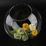 Lovelysunshiny Vase de Boule en Verre Transparent Multi Use Flower Vase hydroponique Micro Paysage de la marque Lovelysunshiny image 1 produit