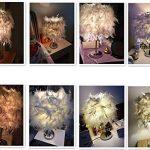 Luminaire plume, Lampe de chevet, Chambre vintage chambre Décoration de maison, Lampe de table moderne, Commutateur de bouton de support de E27, Avec ampoule de la marque MONODY image 1 produit