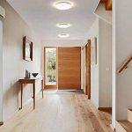 lumière salle de bain plafond TOP 13 image 4 produit
