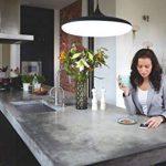 Philips Hue CherSuspension Luminaire Noire White Ambiance 39W [Interrupteur avec Variateur Inclus], Lampe Led Connectée - Compatible avec Apple Homekit - Fonctionne avec Alexa de la marque Philips Lighting image 4 produit