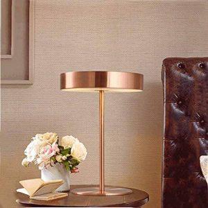 PIAOLING Lampe de bureau moderne moderne, lampe de bureau, lampe décoratif de décoration de mode nordique, salle de séjour, chambre à coucher, bureau de bureau, éclairage de bureau ( Color : Rose gold ) de la marque PIAOLING image 0 produit