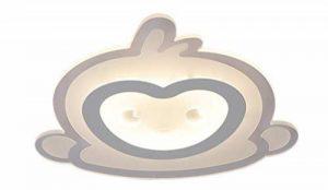 Plafonnier LED Intéressant Petit Singe Design en Acrylique Lampe du Plafond Modern Pour Chambre Enfant Cuisine Salon Balcon Couloir Blanc Chaud D53*5.5cm 40W[Classe énergétique A++] de la marque LFL image 0 produit