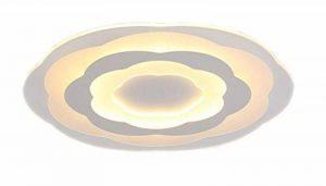 Plafonnier Ronde LED Original Fleur Design en Acrylique Lampe du Plafond Modern Pour Chambre Enfant Cuisine Salon Balcon Couloir Dimmable avec Télécommande D53*4cm 40W [Classe énergétique A++] de la marque LFL image 0 produit