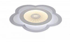 Plafonnier Ronde LED Original Forme de Fleur Cerise Design en Acrylique Lampe du Plafond Modern Pour Chambre Enfant Cuisine Salon Balcon Couloir Blanc Froid D63*4cm 50W [Classe énergétique A++] de la marque LFL image 0 produit