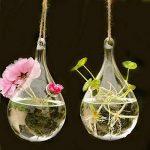 Rainbaw. M Type de Suspension Transparente Goutte d'eau Type d'eau la Culture Vase de la marque RAINBAW.M image 3 produit