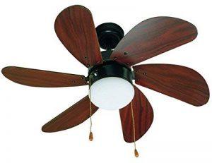 ventilateur bois TOP 0 image 0 produit