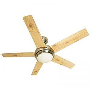 Ventilateur de plafond Fresco en nickel brossé, télécommande incluse, pâles à double face argent/pin, 112 cm de la marque AireRyder image 0 produit