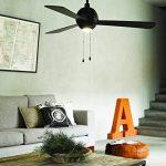 ventilateur de plafond noir TOP 6 image 1 produit