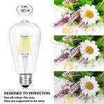 Wedna Blanc froid 6W E27LED Edison Ampoule, Verre, Lot de 4, E27 6.00W 220.00V de la marque WEDNA image 4 produit