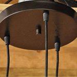 WSND Moderne Simple Loft Skull Head Lustre Bouteille en verre Lampe suspendue Couloir nuit Living Room Bar 3 Pendant Lamp, 220V-240V de la marque WSND image 2 produit