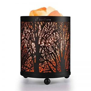 Zanflare Lampe de Sel Himalayenne Naturelle, Lumière de Nuit, Lampe de Chevet, Lampe Creative, Lampe Ambiance avec Bouton de Réglages d'Intensité Idéal pour Décorer Votre Maison. de la marque Zanflare image 0 produit