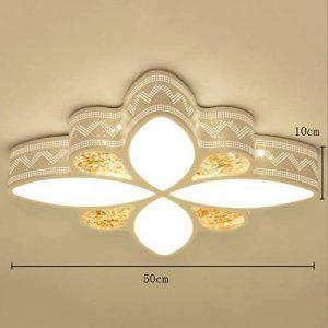 ZXW Lustre vintage- LED lampe de plafond, trois couleurs gradation lampe de fer forgé corps PMMA abat-jour rétro simple hôtel chambre étude salon lampe de balcon (taille : C-ø50cm*H10cm) de la marque ZXW image 0 produit